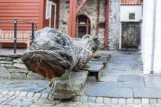Seeschlange in Bryggen